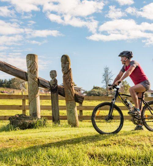 Twin Coast Cycle Trail-144