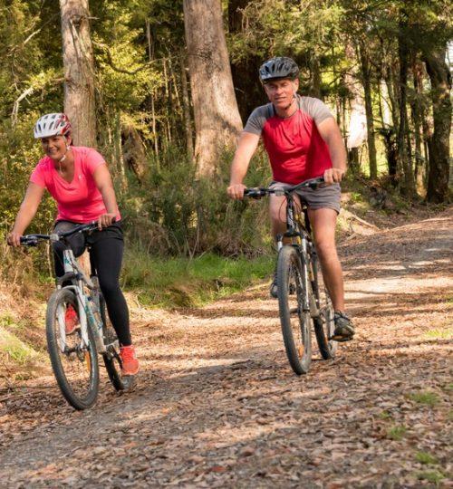 Twin Coast Cycle Trail-180