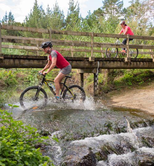 Twin Coast Cycle Trail-181