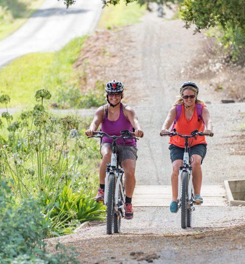 Twin Coast Cycle Trail-30